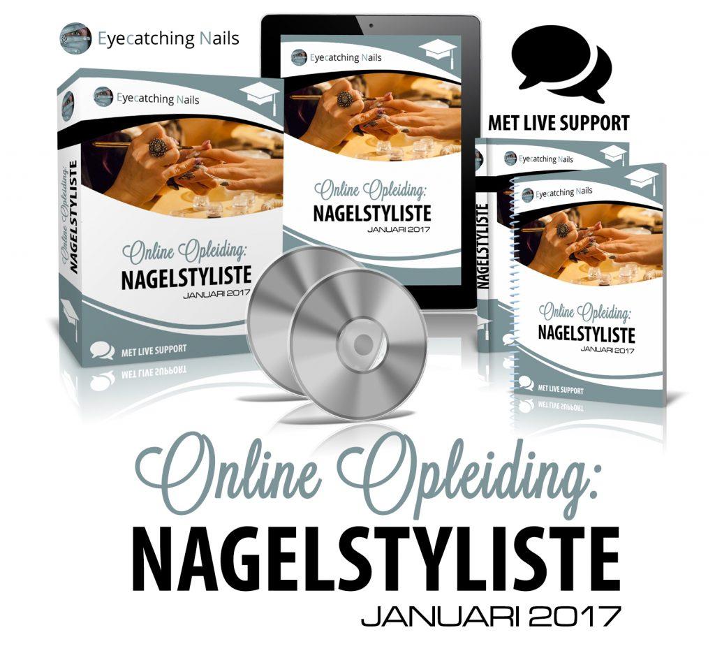 online-opleiding-nagelstyliste